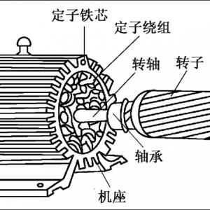 三相异步电机定子转子的作用